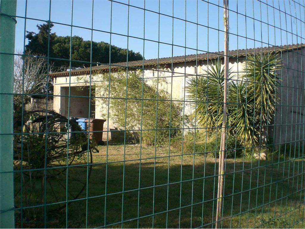Capannone Agricolo